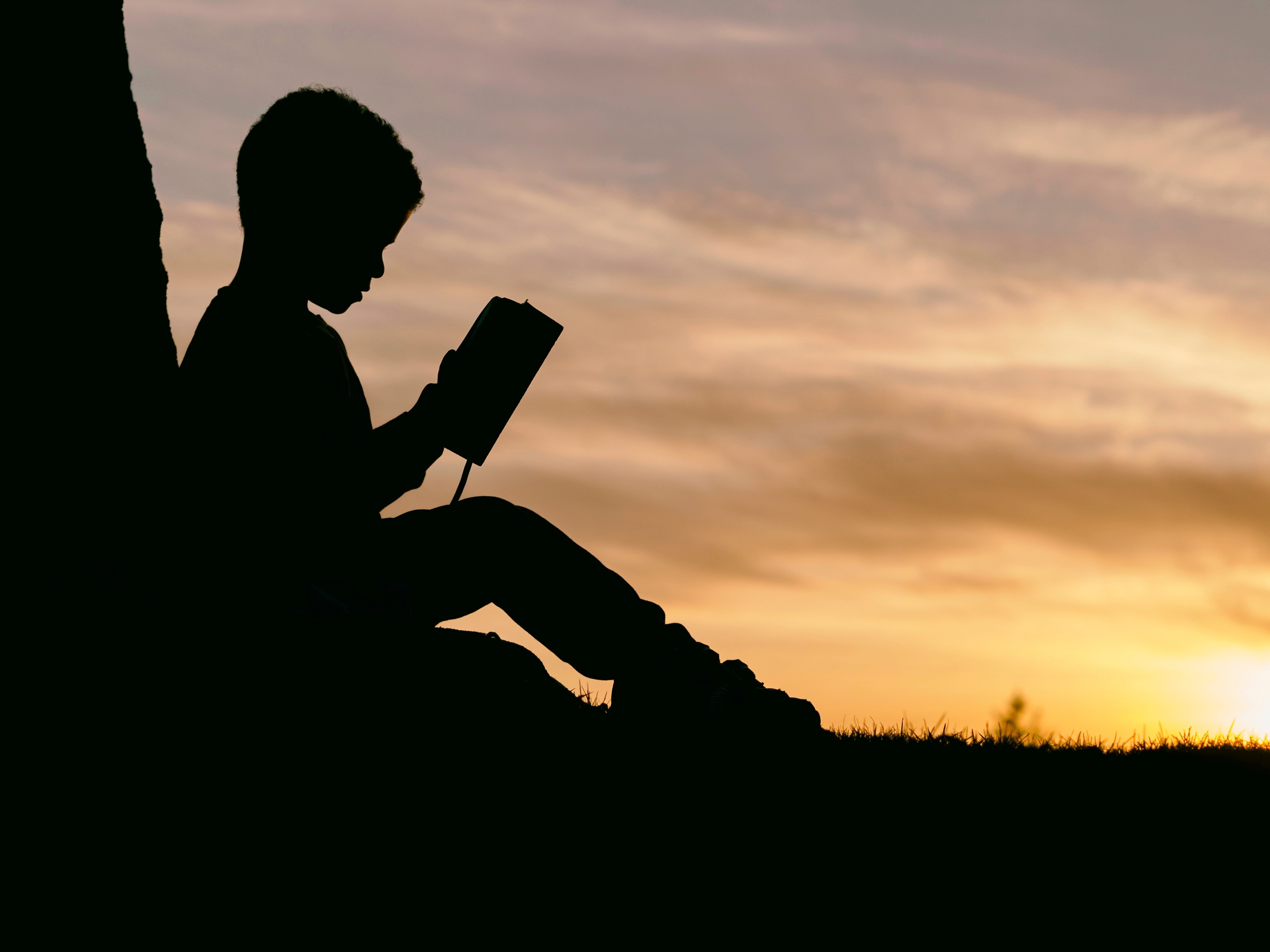 つらいときこそ本を読め!書店へ通う習慣と本を活かすことを教えてくれた運命の一冊【推薦図書】