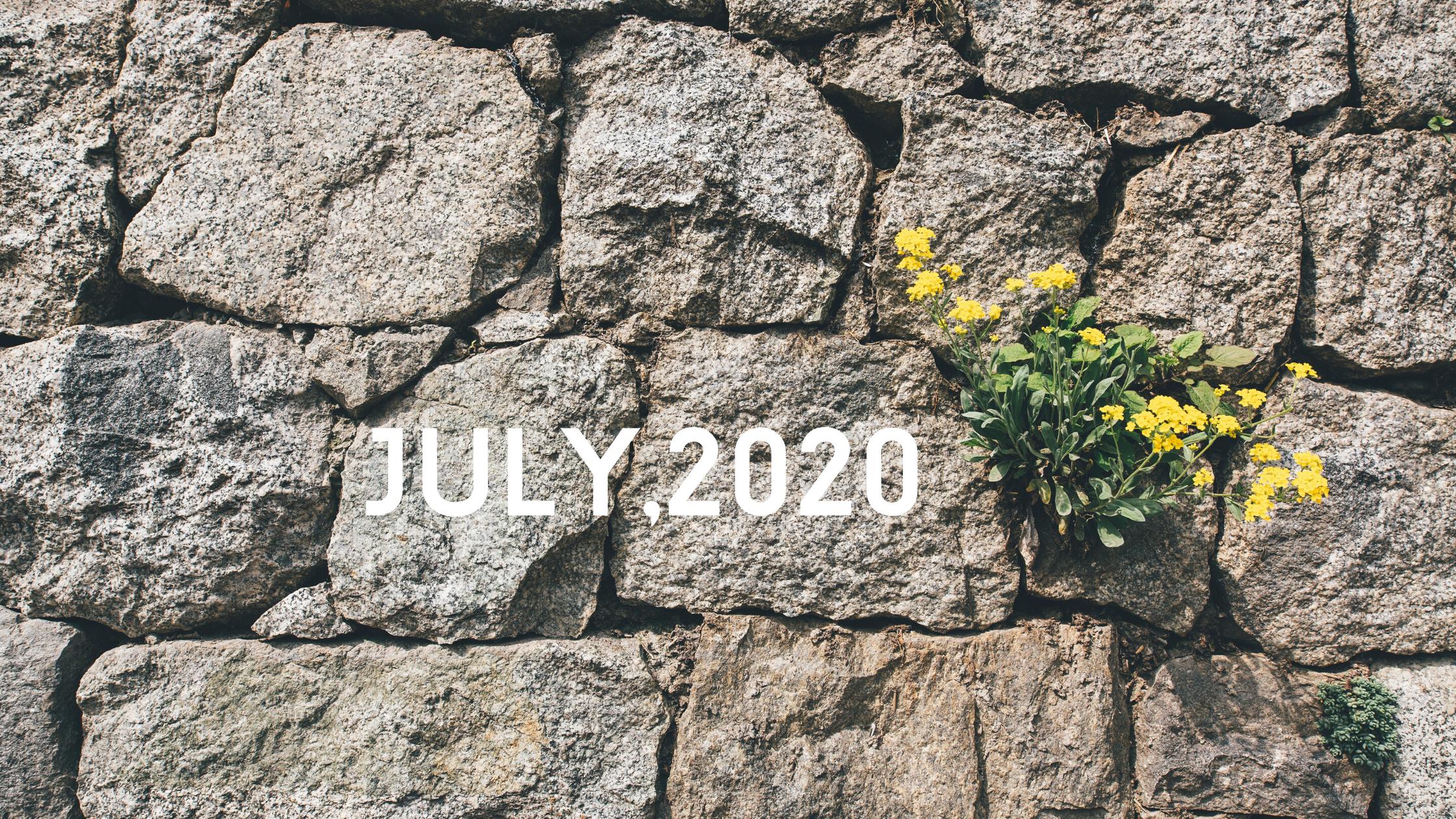 【日々のあわ】2020年7月のこと